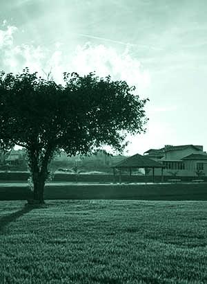 Villa dos Plátanos